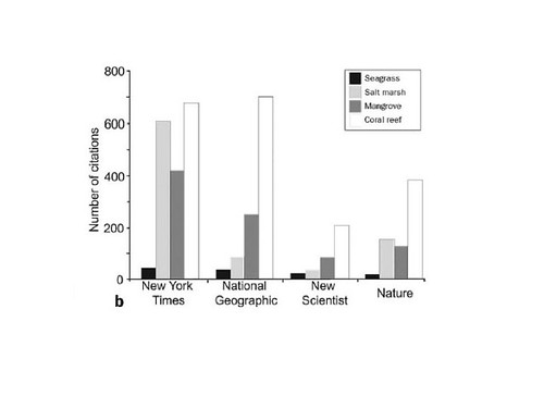 Seagrasses in the media (from Orth et al. 2006)