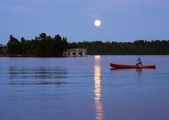 238/375 Lake of the Woods (13mur) Tags: project365 lakeofthewoods moonlight paddle canoe harvest moon hh5224