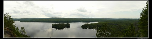 Looking out at Whitefish Lake on Centennial Ridges Trail