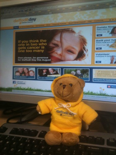 Daffodil Day 2010 - support cancer research, buy a bear