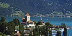 Spiez by Thuner See, Switzerland