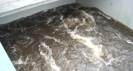 Hochwasser Rieste