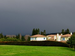 Get Inside Quick!!! (Mary Faith.) Tags: trees house storm nature field grass rain weather hail contrast dark spanish hedge chimneys paddock