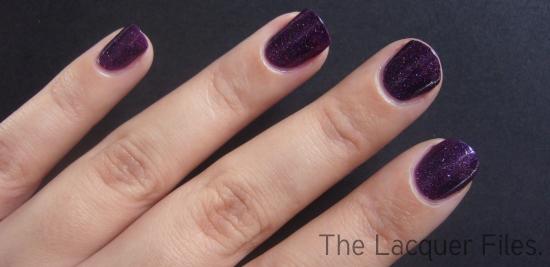 Kiko Nail Lacquer 255 Purple Microglitter