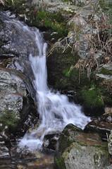 Petite cascade (ceriser02074) Tags: eau ru cascade cours février ardèche