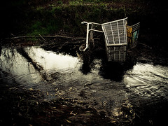 Shopping Cart Down (SF Lіghts) Tags: delete10 delete9 delete5 delete2 delete6 delete7 save3 shoppingcart delete8 delete3 save7 save8 delete delete4 save save2 save9 save4 save5 save6 olympusep1 deletedbydeletemeuncensored