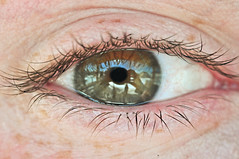 045/365 (local paparazzi (isthmusportrait.com)) Tags: blue iris selfportrait macro green eye texture closeup flesh contrast prime pod mine dof skin iso400 hazel eyeball eyebrow unusual af cry tear pupil freckle autofocus 2011 365project nikond90 60mm28micro photoshopelements7 pse7 localpaparazzi redskyrocketman lopaps