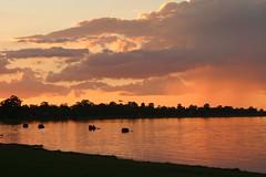 lbsunset208 (eyesofmark) Tags: sunset river southaustralia murray loxton riverland barmera renmark lakebonney