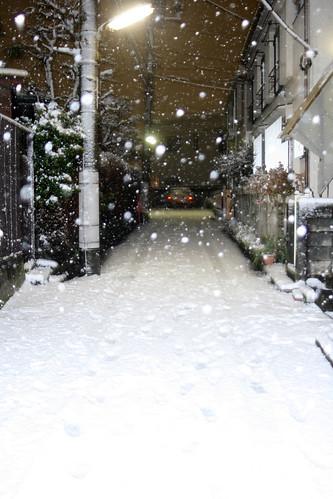 Nieve en Tokyo 2011
