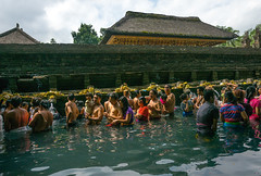 Worshipers taking a bath in the purifying pool at Tirta Empul temple, Bali island, Tampaksiring, Indonesia (Eric Lafforgue) Tags: adults amritha asia attraction bali bali1851 balinese bathing day groupofpeople hindu hinduism holyspringwater horizontal indonesia indonesian offerings outdoors pond pool purification purifying religion religious religiousbuilding religiouspractice ritual ritualbath sacred tampaksiring tirta tirtaempul tourism warmadewadynasty water watertemple women worship worshipers baliisland