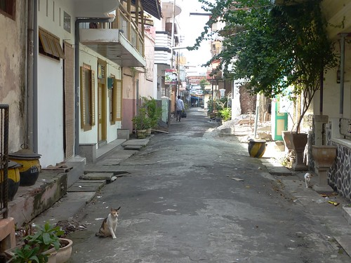 Java-Surabaya (19)
