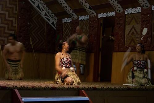 donde viven los pajaros kiwi