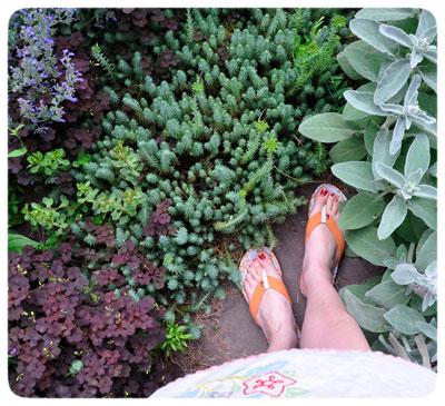 Garden-Steps