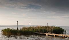 (mmmáté) Tags: lake nikon balaton balatonlelle móló nád d40x 3518g
