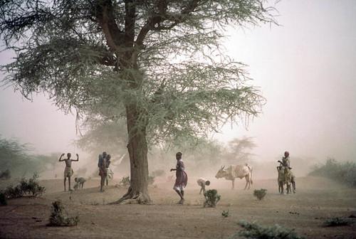 Coping with Disaster: Sandstorm in Kenya