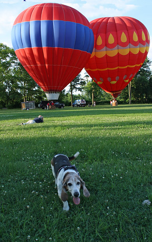 Jake with Hot Air Balloons