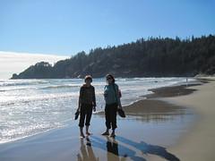 IMG_0599 (reistarr) Tags: beach oregon coast oswaldwest capefalcon shortsandsbeach