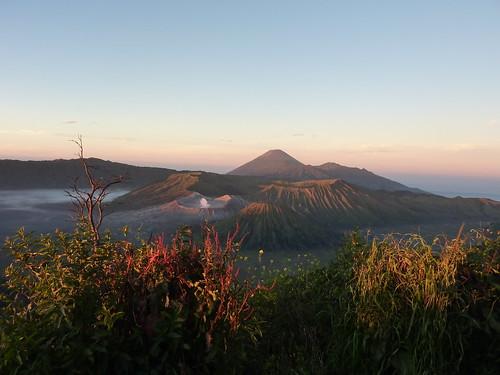 Java-Bromo-jour 2 am (57)