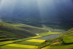 Alba sulla piana di Castelluccio (fotomassimo) Tags: from above sky parco sun mountain verde beautiful yellow sunrise spectacular landscape fantastic nikon ray looking view image god alba earth dal giallo cielo da gods rays monte sole incredible streaking montagna depth height luce dei paesaggio umbria sunray sunbeams monti raggi tremendous sense castelluccio nazionale raggio sopra sibillini gialli vettore dallalto fioritura fiorita divinelight castellucciodinorcia the4elements coltivazioni colorphotoaward d700 top20greenish