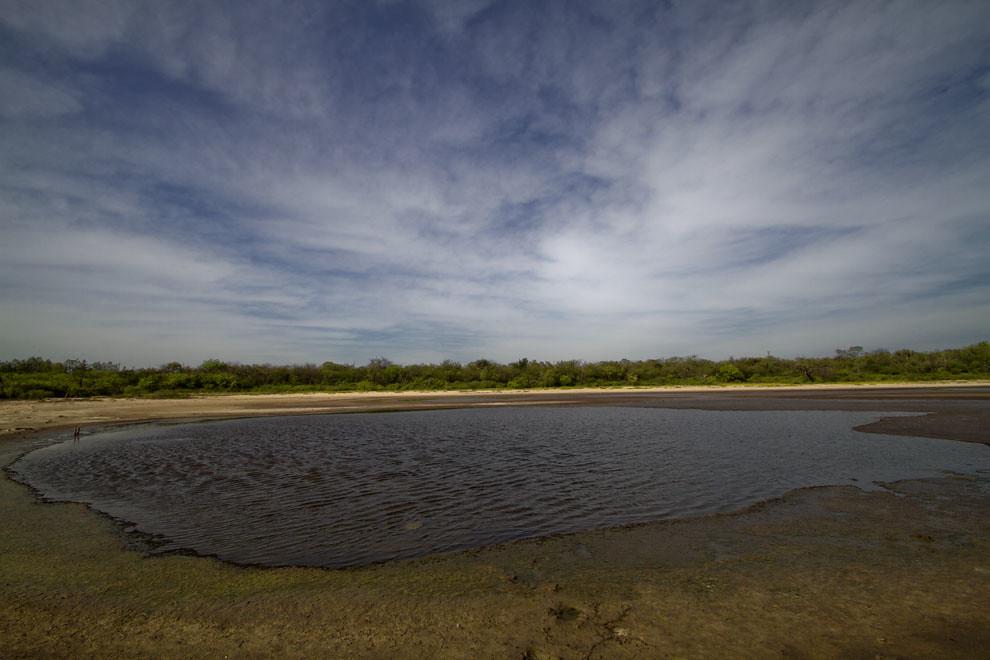 Una aguada se va secando en la época de sequías en las inmediaciones de Isla Po´i. (Tetsu Espósito - Isla Po´i, Chaco, Paraguay)