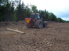 Site Work (GWD Forestry - Canada) Tags: county christmas new york trees green forestry capital brunswick growth fir safe fraser investment income wholesale alternative buffer sustainable balsam tangible inflation managed investments agroforestry lowrisk