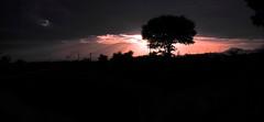 Morning Sun (Akshay Srikar) Tags: morning light shadow sky orange sun tree nature silhouette clouds sunrise dark landscape dawn nikon horizon wide rays d60