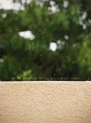 I thank You with every breath I take. (D'~) Tags: rain happy bokeh promise thankyouallah 7amdellah