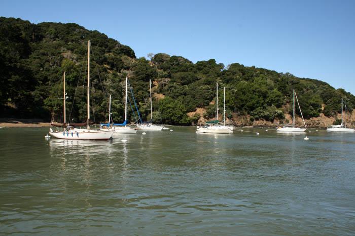 Angel Island Scout Trip (24)