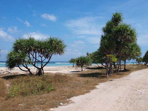 Lombok e islas Gili (16)