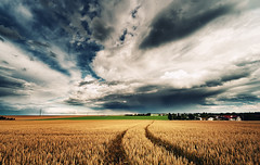 Golden Crops (Philipp Klinger Photography) Tags: light shadow summer sky cloud storm nature water field barley rain june clouds rural germany dark landscape deutschland golden nikon europa europe track hessen path frankfurt wheat bad tracks trails stormy trail filter crop crops thunderstorm philipp thunder hesse nauheim cokin badnauheim klinger wetterau gnd gndfilter d700 dcdead goldencrops