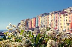 Porto Venere sullo sfondo (gilbertotphotography.blogspot.com) Tags: sea summer d50 nikon mare estate liguria unesco portovenere golfo laspezia nikonista parco5terre