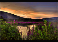 Ives Run Sunset (pinecreekartist) Tags: pennsylvania wellsboro chiaramonte wellsboropa pinecreekartist tiogacountypachiaramonte