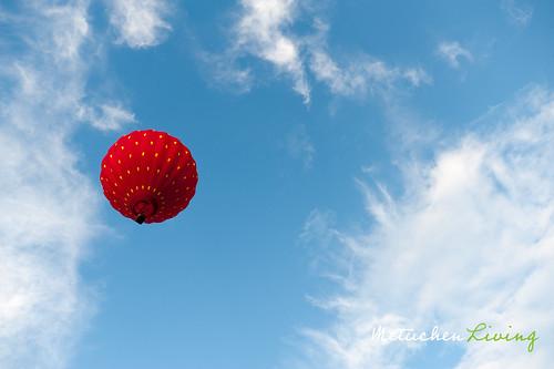 BalloonFestival-109