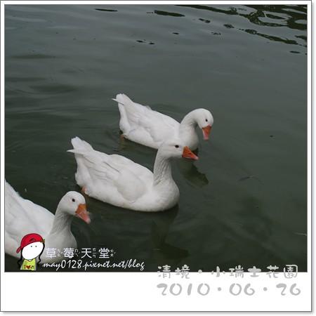 清境小瑞士花園73-2010.06.26