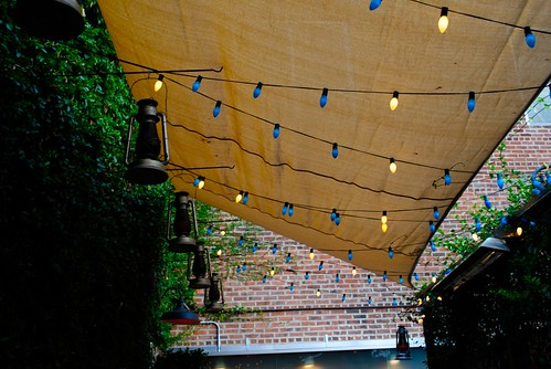 blue + white string lights on the back patio.