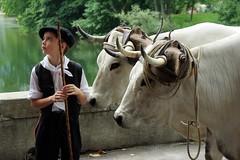 Autrefois le Couserans 2010 (St-Girons/Ariège/Pyrénées) (PierreG_09) Tags: tracteur pyrénées pirineos défilé ariège saintgirons stgirons couserans leuropepittoresque autrefoislecouserans