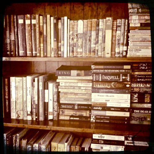 20100804 Bookshelf