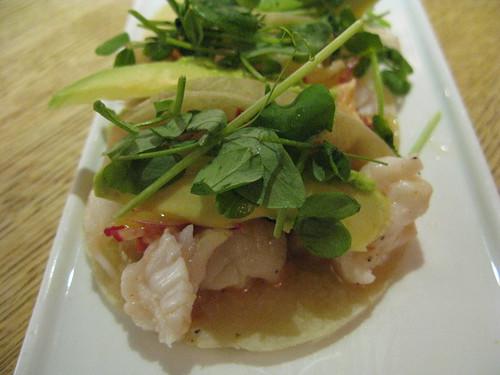 Tacos de Langosta Closeup