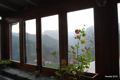 from the chalet to the mountains (venetia koussia) Tags: trees flora forests  monastiraki  orininafpaktia   greeknature  evinoslake  44  katochora