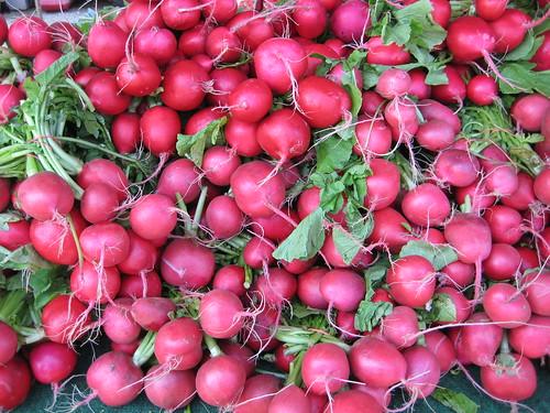Giant radishes, Keady Farmer's Market