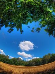 Adios (Isidr☼ Cea) Tags: nubes ames peleng8mmf35fisheye magín perdidoenlared olympuse520