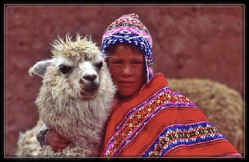 Lama_Enfant