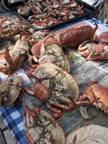 Krabber til avkjøling