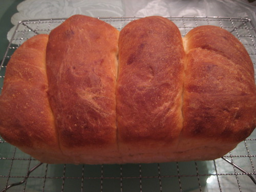 Homemade Loaf of Bread