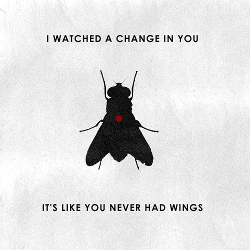 I watched You Change