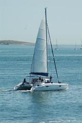 One Kool Cat (jelpics) Tags: ocean sea boston sailboat harbor boat ship yacht vessel catamaran mast bostonma bostonharbor onekoolcat