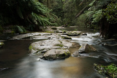 Great Ocean Road 68 (Scott Weatherson) Tags: trees nature water forest river stream australia victoria greatoceanroad lorne surfcoast erskinefalls
