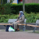 Wilgenplantsoen Rotterdam thumbnail