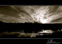 B&W High Cloud (rhyspope) Tags: new blue trees sunset sky bw cloud sun white lake plant black mountains reflection tree nature wet water beauty grass silhouette wales clouds creek sunrise canon river landscape grey amazing intense pond stream branch skies natural display ripple south gray bank australia lagoon front boom valley nsw aussie powerful penrith moist 500d rhyspope