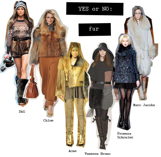 yes or no- fur copy